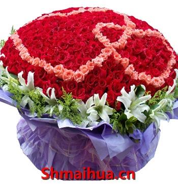 999玫瑰 天长地久